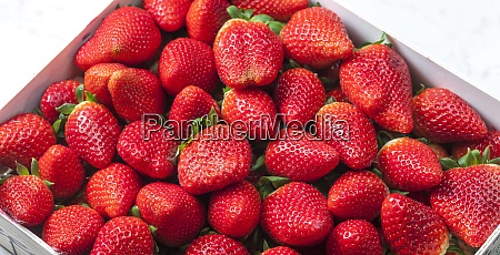 still life of fresh red strawberries