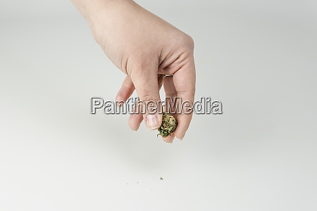 close up of females hand holding