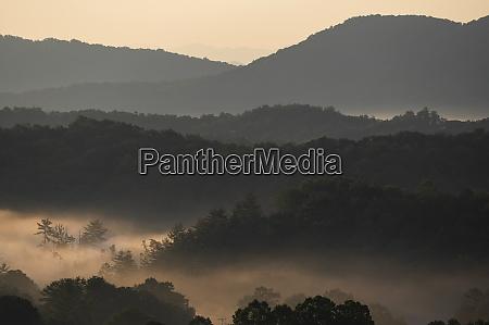usa georgia fog above forest and
