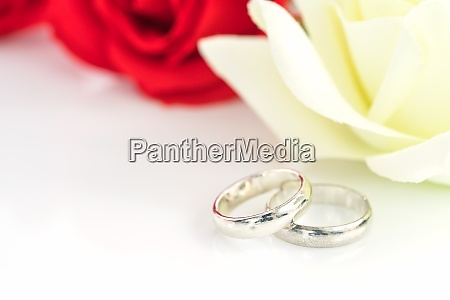 red rose and wedding ring on