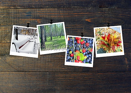 photos of four seasons attached to