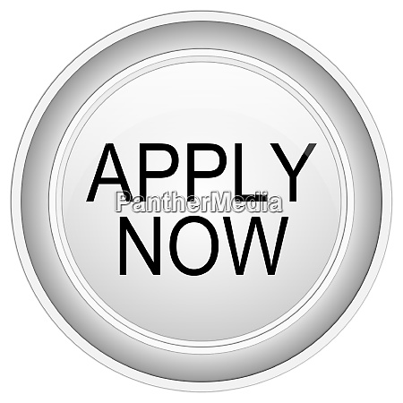apply now button on white background