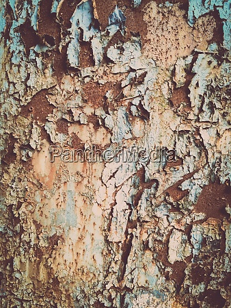 rusty metal surface with peeling blue