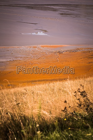 highly polluted lake with cyanide in