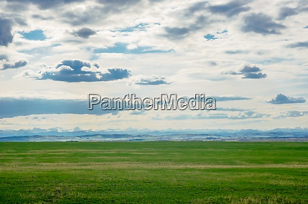 prairie landscape with mountains in distance