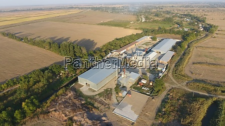 rice plant hangar for storage of