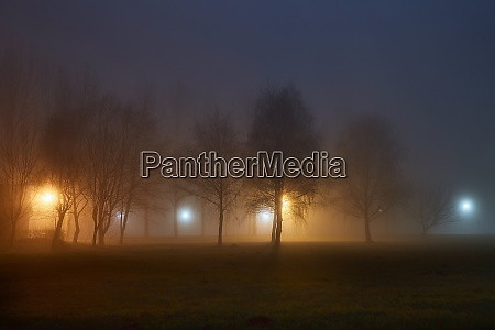 foggy mysterious night in the park