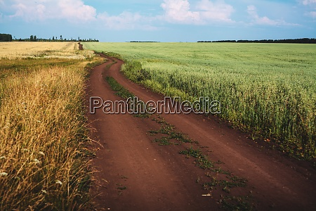 dirt track through fields