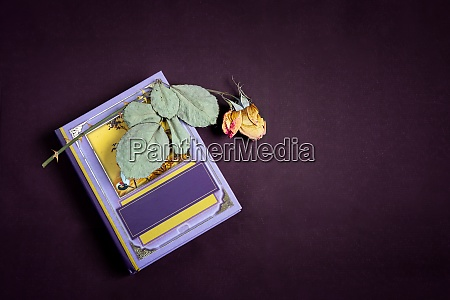 book and dried rose flower with
