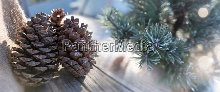 winter decoration with pine cone