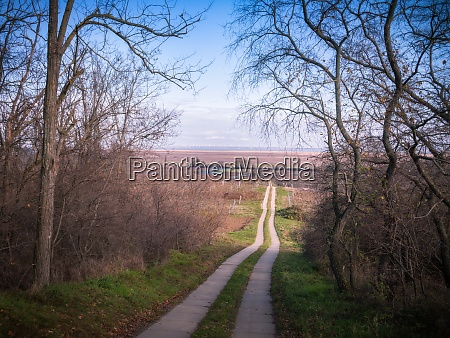 road going downhill to lake neusiedlersee
