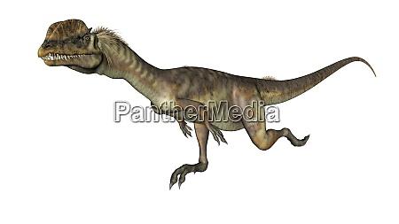 dilophosaurus dinosaur running 3d render