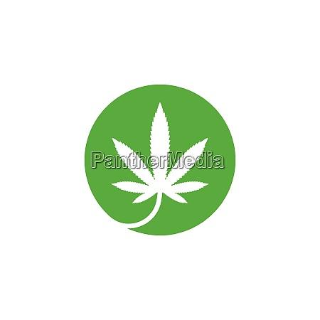 cannabis leaf vector icon illustration design