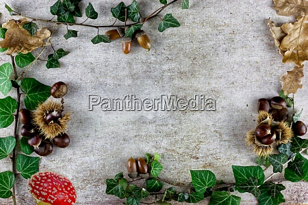 autumn moods background wallpaper composition top
