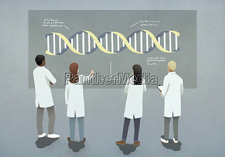 scientists examining and discussing dna double