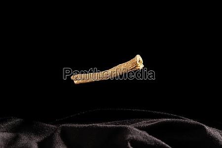 ashwagandha root isolated on black