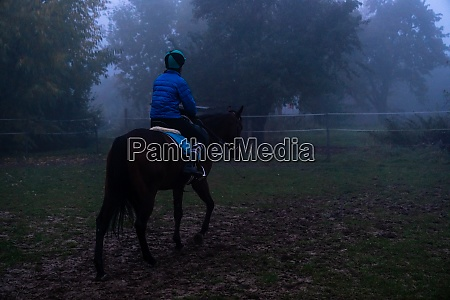 evening ride in a horse saddle