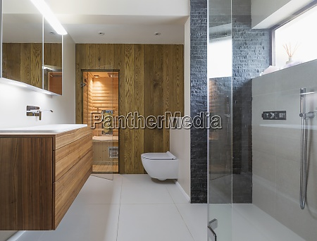 modern home showcase bathroom