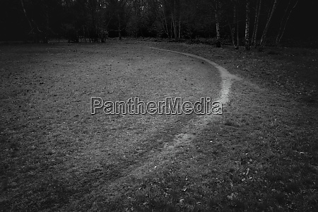 footpath through park