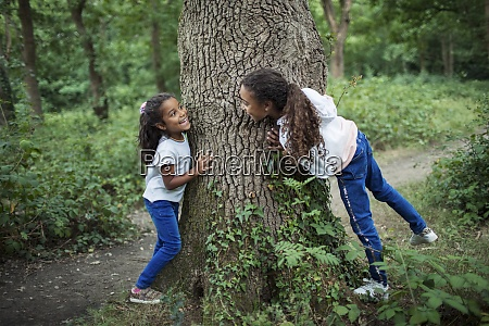 cute sisters playing at tree trunk