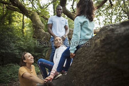 happy family climbing tree in woods