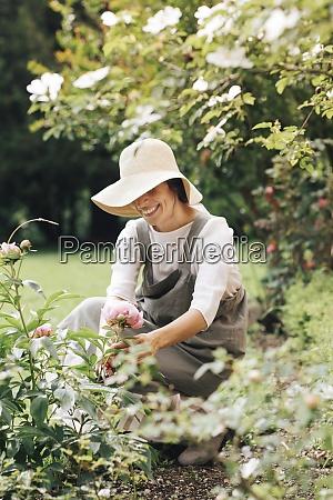 woman smiling while picking rose flower