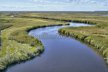 usa, , maryland, , drone, view, of, marsh - 29113298