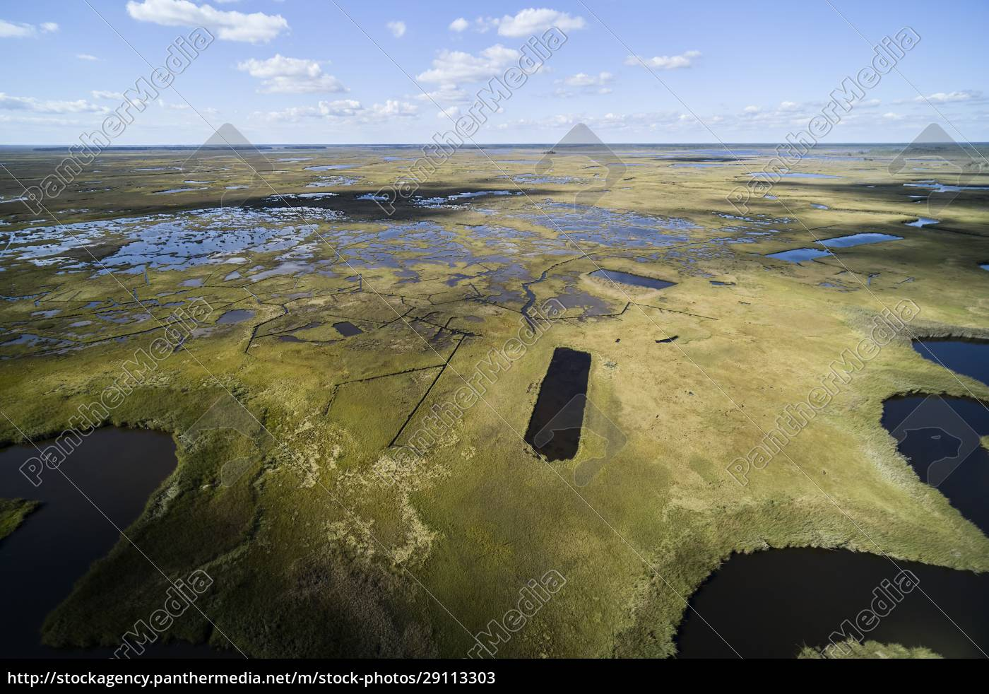 usa, , maryland, , drone, view, of, marshes - 29113303