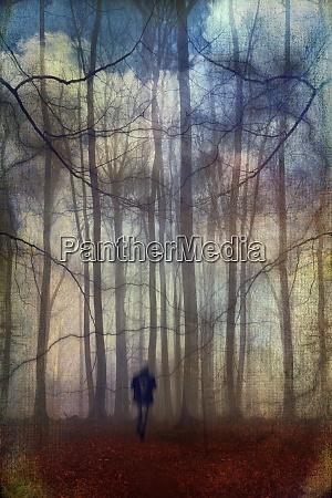 man walking through fantastic forest landscape