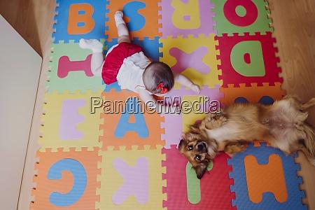 baby girl with dog lying on