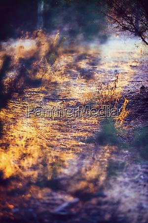 spain andalusia huelva walkway at nature