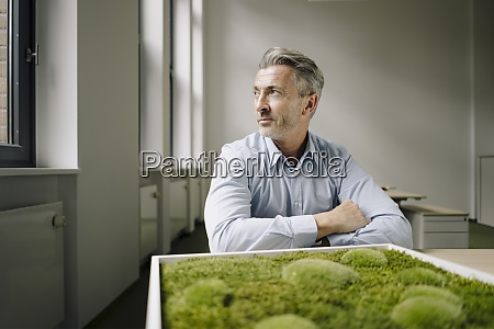 businessman sitting by moss frame at