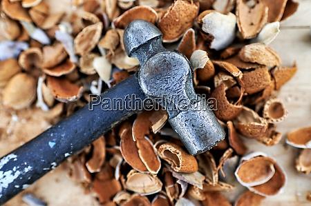 hammer lying on almond husks