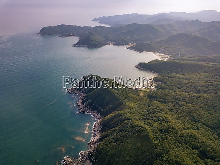 aerial view of forested coastline at