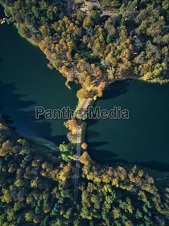 bridge over pond amidst green trees