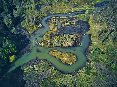 aerial view of river and green