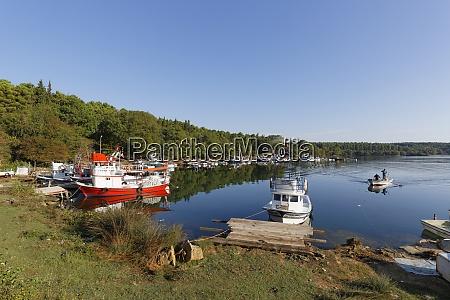 turkey black sea sinop fishing boats