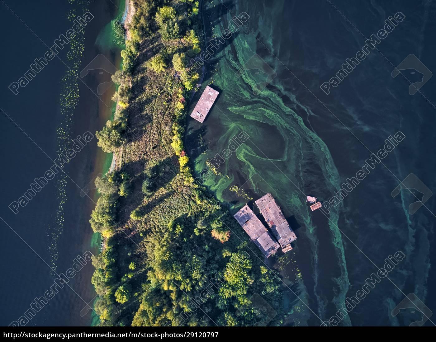floating, platform, over, green, algae, on - 29120797