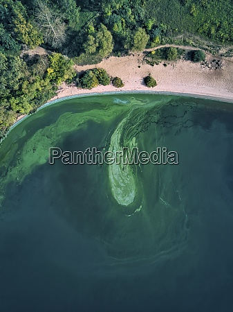 green, algae, growing, in, volga, river - 29120765