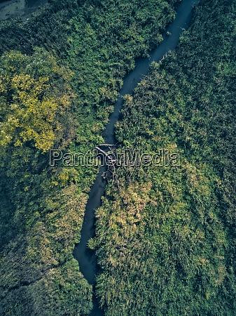 stream flowing through green landscape