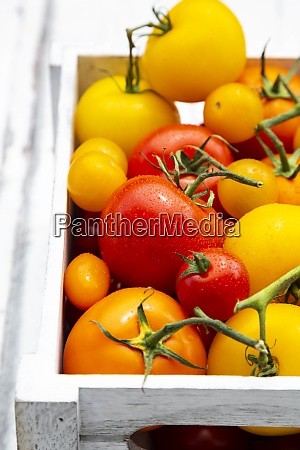 crate of ripe tomatoes