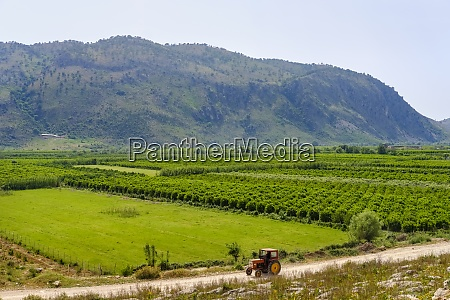 albania vlore county konispol tractor and