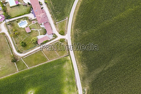 drone view of green fields and