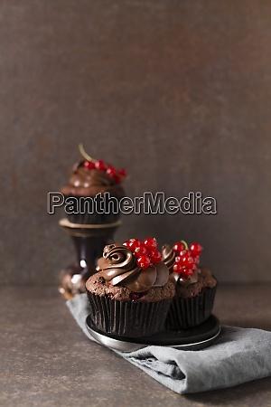 studio shot of chocolate cupcakes with