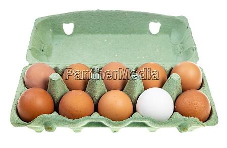 ten chicken eggs in green box