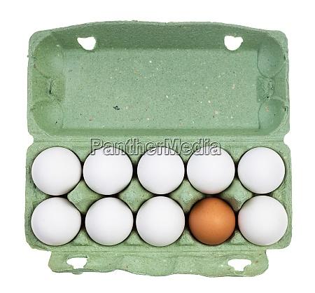 top view of ten chicken eggs