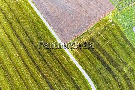 drone, view, of, dirt, road, stretching - 29125511