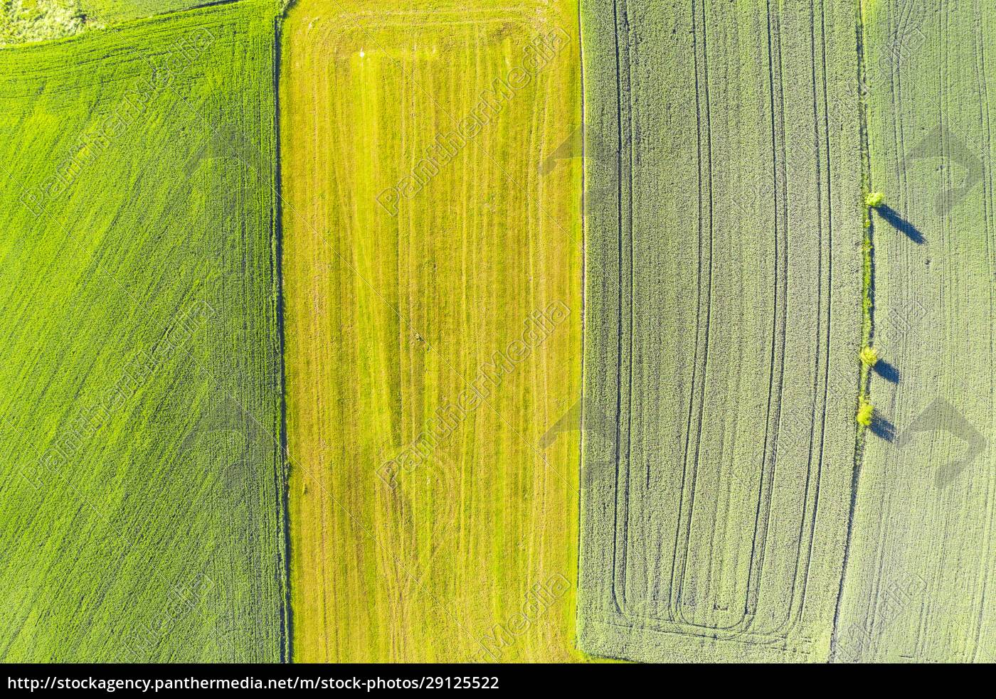 drone, view, of, green, and, yellow - 29125522