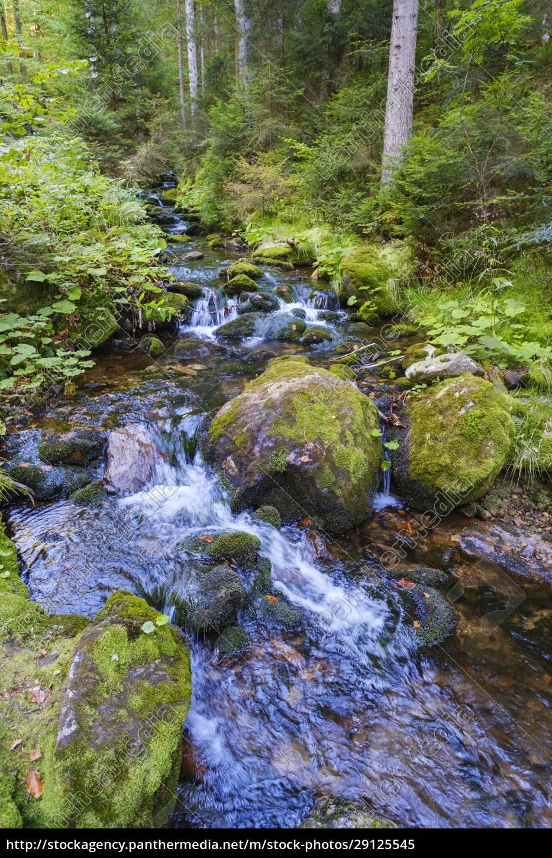 sollerbach, river, flowing, through, bavarian, forest - 29125545