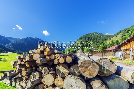 pile of wood lying outside in